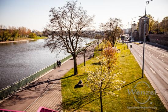 Frühlingsspaziergang Magdeburg - zwischen Dom und Kloster Unser Lieben Frauen
