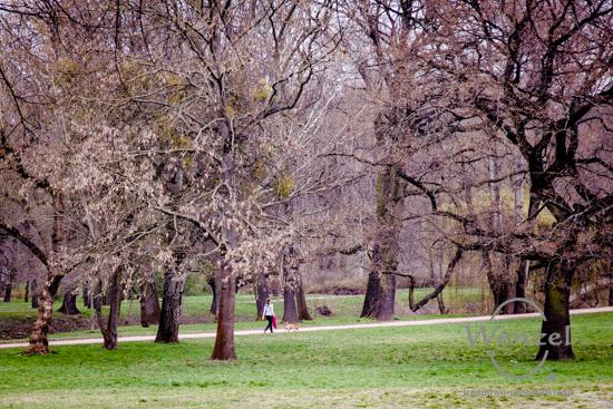 Spaziergänger im Rotehornpark