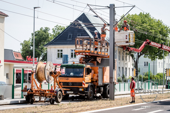 Magdeburg, Magdeburg 2025, Ottostadt, Baustelle, Wiener Straße, Straßenbahn, MVB, Oberleitung –  Foto Wenzel-Oschington.de