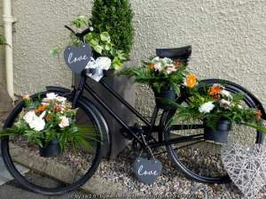 Vintage Irish Bicycle - the love bike