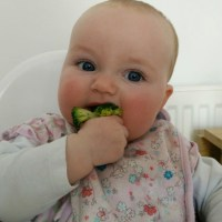 """""""A"""" trying her first bit of solid food. #BabyLedWeaning #ProudDad https://vine.co/v/O3LaPYHu77w #POTD"""