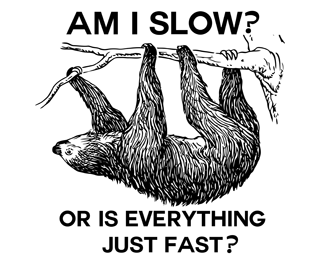 Sloth: Am I slow? Or is everything just fast?