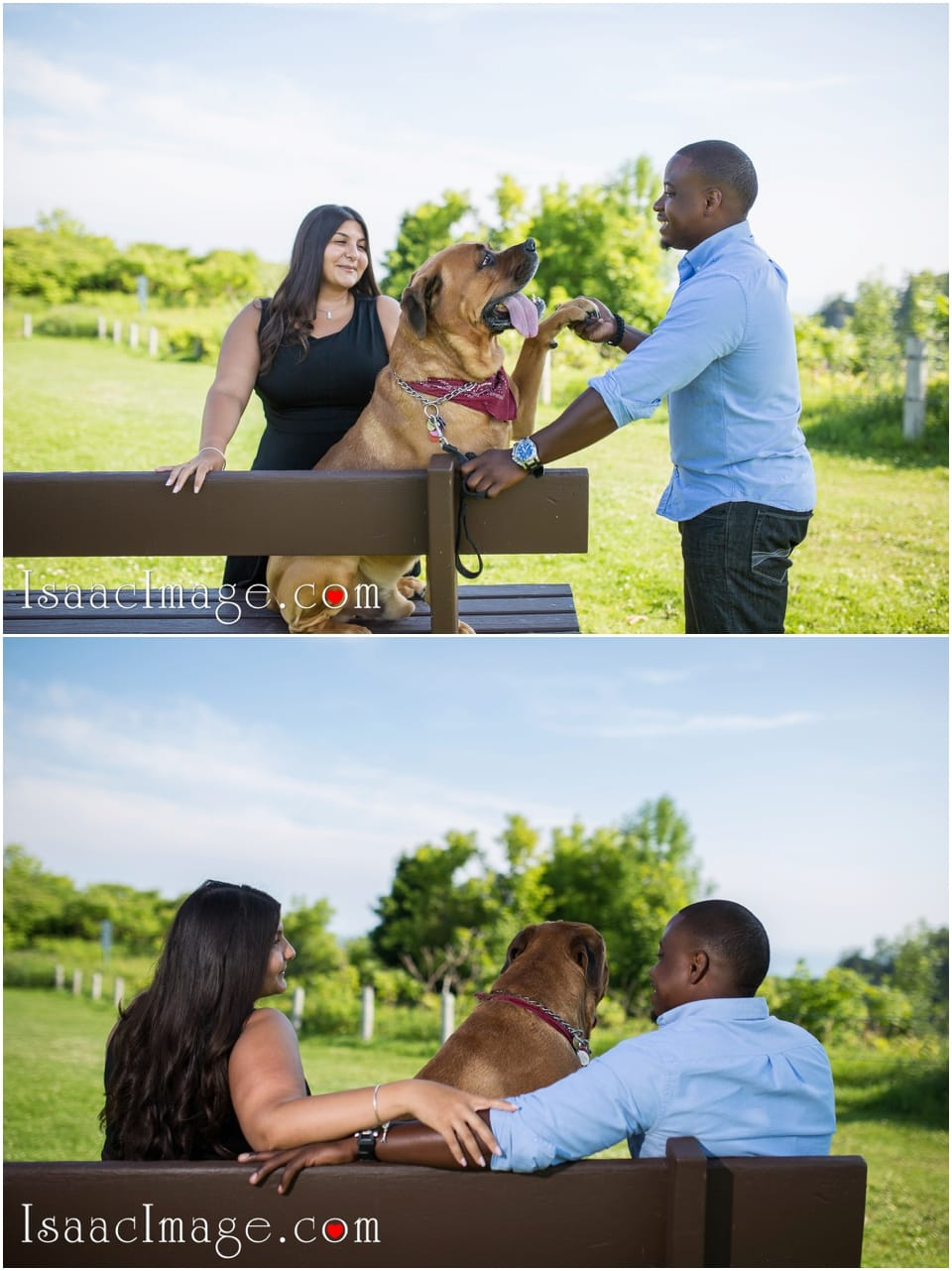 Bluffers park engagement Azita and Andrew_3584.jpg
