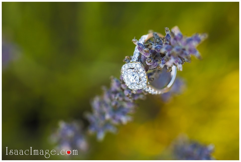 Bonnieheath estate lavender winery Engagement_3411.jpg