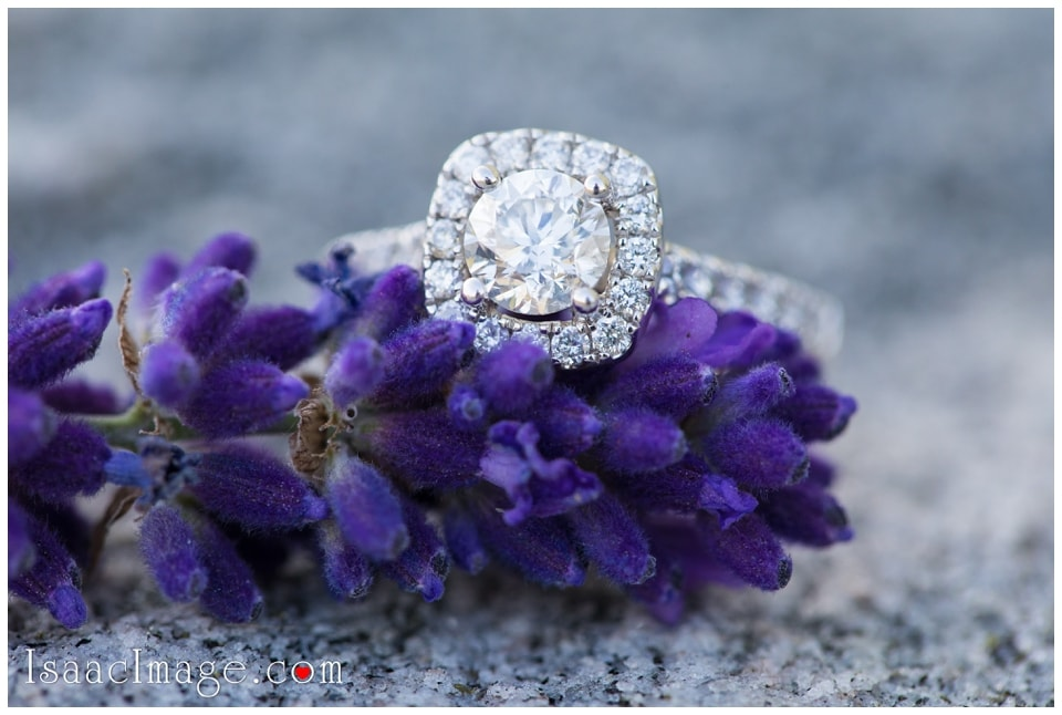 Bonnieheath estate lavender winery Engagement_3417.jpg