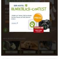 Der Asstel Hundeblick-Contest*