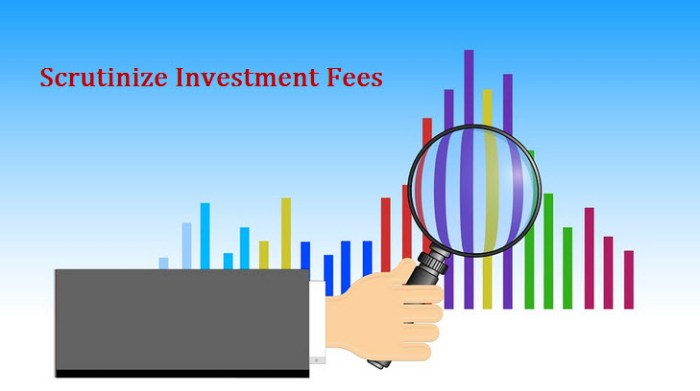 Scrutinize Investment Fees