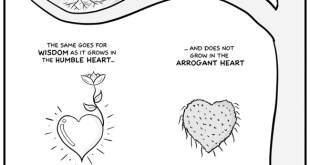 sufi-comics-where-does-wisdom-come-from