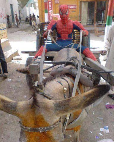 Amazing-Spiderman-in-Pakistan