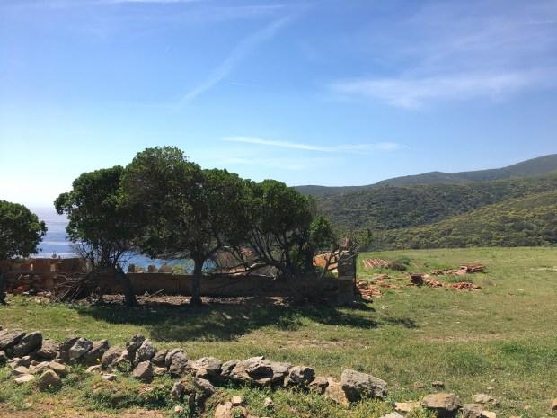 vista da Cala d'Oliva (D.Buscemi 2017)