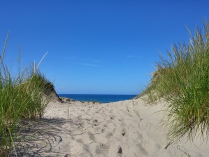 This was the dune I hiked over from our campsite to get to beautiful Lake Michigan.