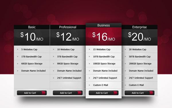 Professional Pricing Table