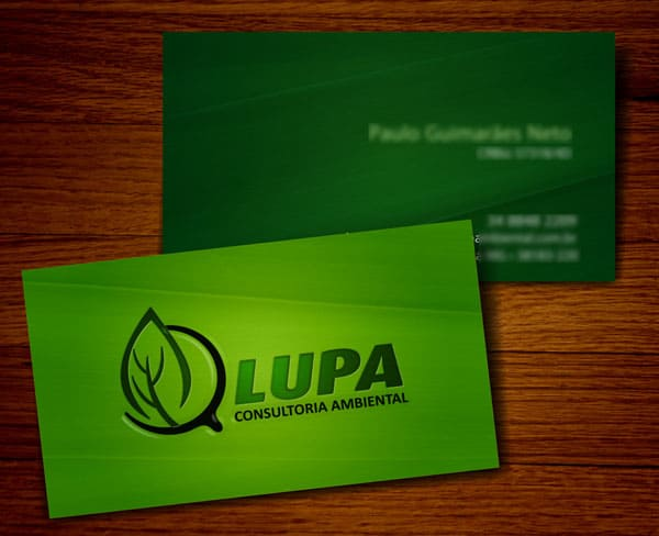Lupa Consultoria Ambiental