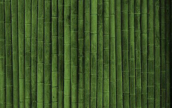 green Bamboo textures
