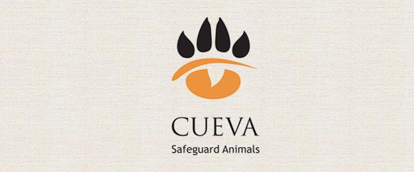 cueva logo