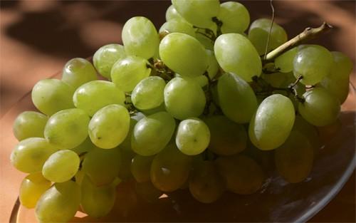 green grape wallpaper