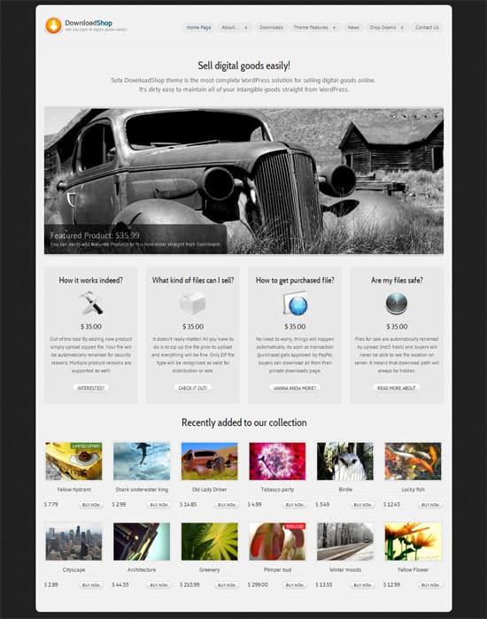 DownloadShop WordPress theme