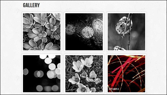 create-your-poftfolio-gallery-using