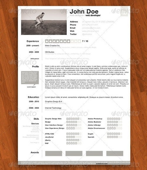 modern and professional resume template examples 13