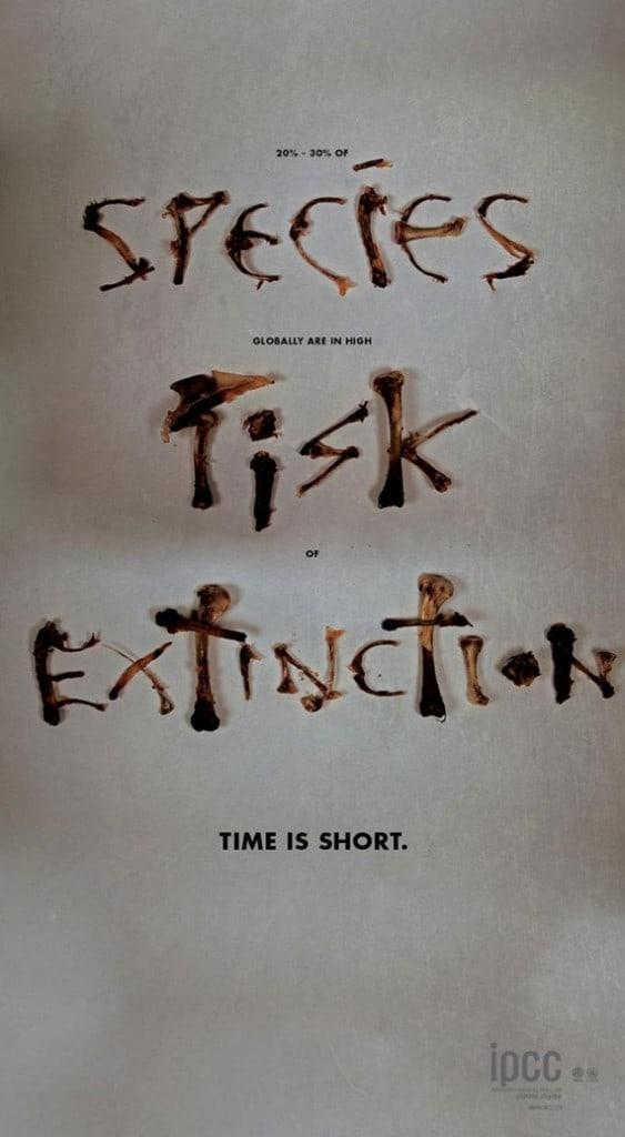 Species Risk Extinction