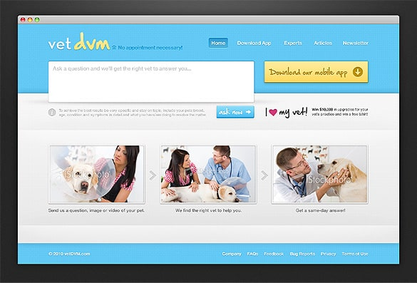 Light Blue Website Template PSD