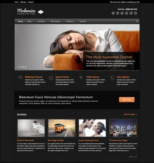 Modernize wordpress business themes