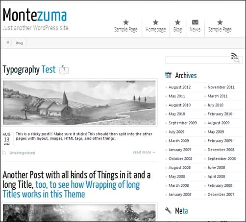 Montezuma responsive WordPress theme