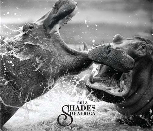 Shades-of-Africa-2013