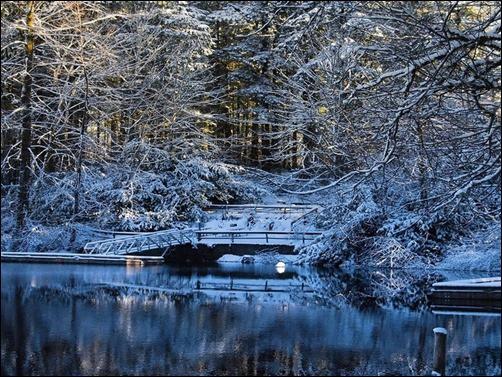 Winter-Scenery-Wallpaper-winter-wallpaper