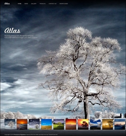 atlas WordPress Photography Themes