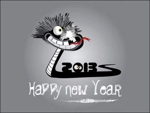 funny new-year-2013 wallpaper