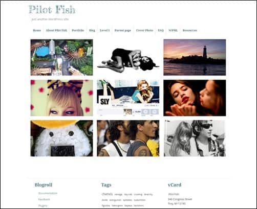 pilot-fish-portfolio-theme