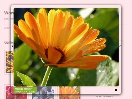 jQuery Image Zoom Plugins auto thickbox