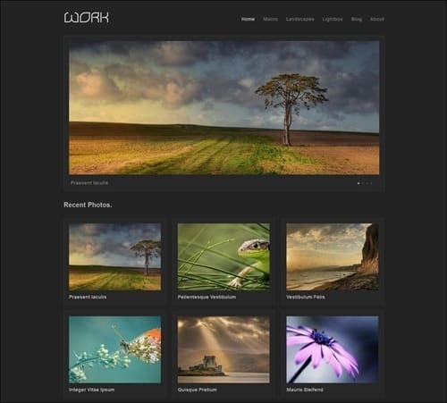 work WordPress Photography Themes