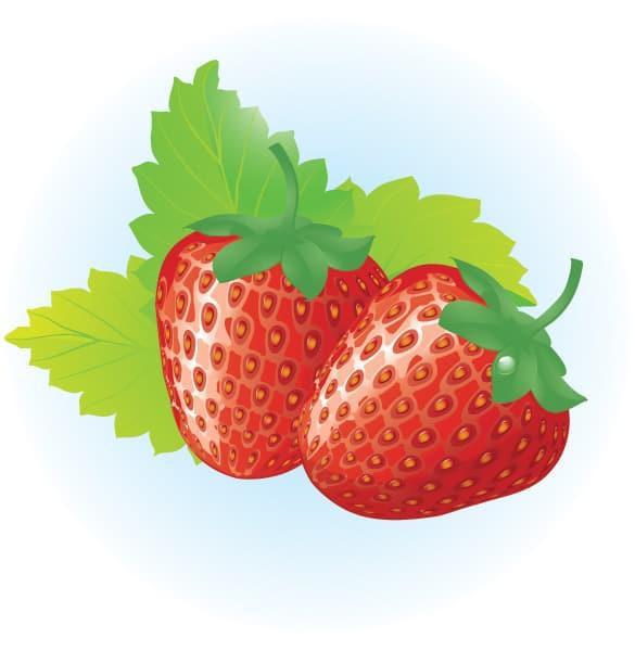 Juicy Red Strawberries Vector Graphic