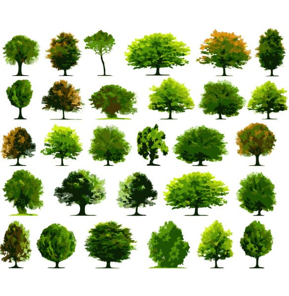 30 Varieties of Vector Tree Illustrations
