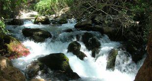 1280px-Israel_-_Banias_waterfalls_001