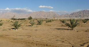 Arava landscape