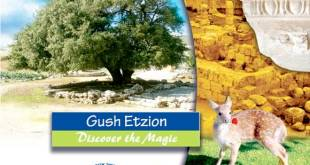 Gush Etzion Foundation