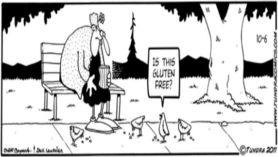 Gluten-Free-Bird-Cartoon