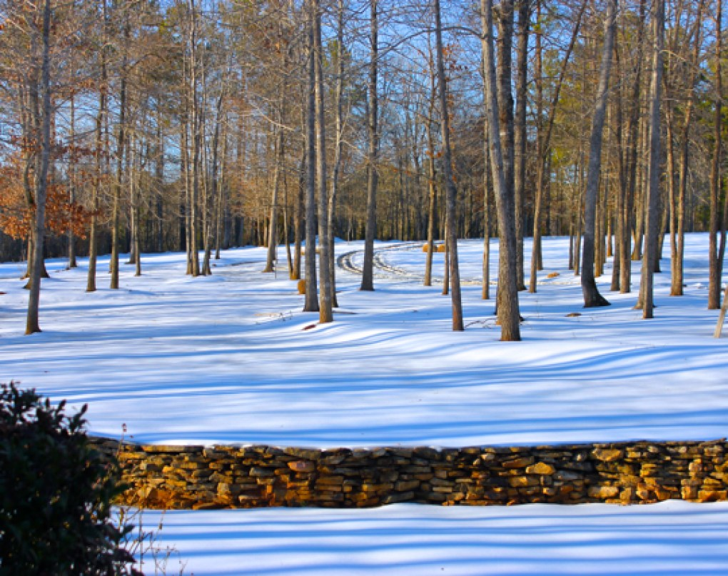 Winter Snow, Carolina's 2014