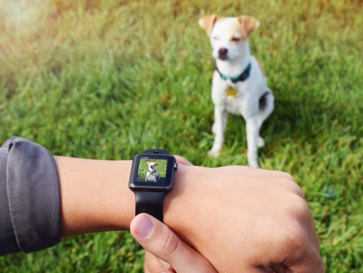 CMRA: il cinturino per Apple Watch con fotocamera integrata