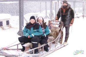 Sledging in Lapland