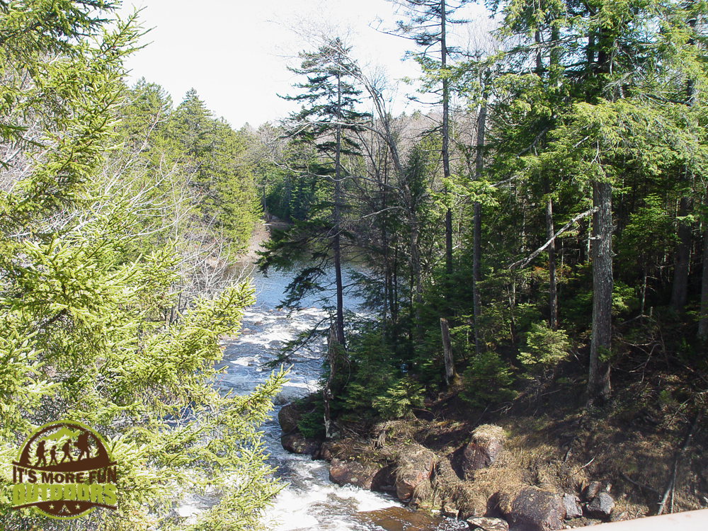 Looking downstream from Low's lower dam. 2015 BOG RIVER FLOW-1-4