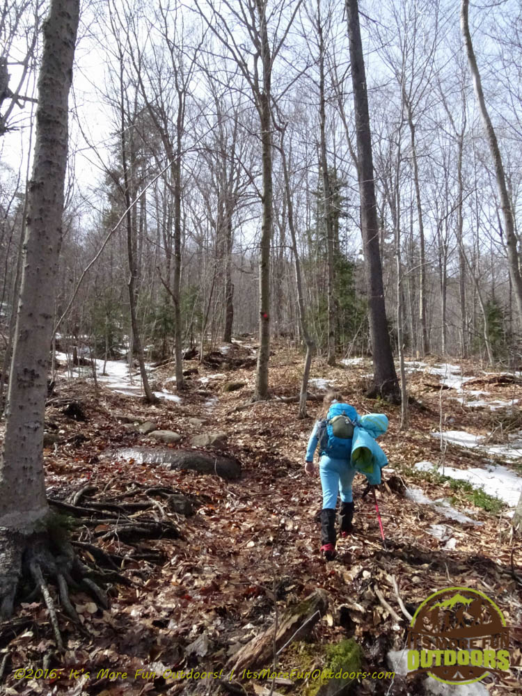 Starting the ascent! Dora ran up, of course! Owl's Head Winter Fire Tower Challenge Hike, Long Lake, NY, Adirondacks, March 13, 2016