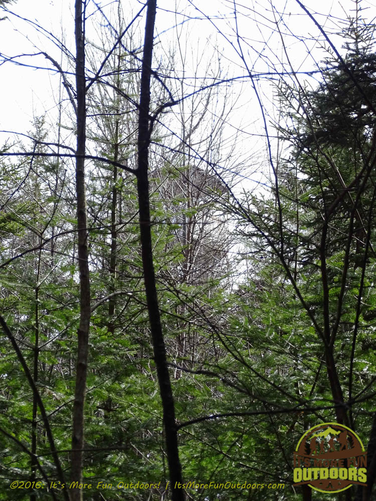 First peek at the tower, very hard to see through the trees even in the Winter! Owl's Head Winter Fire Tower Challenge Hike, Long Lake, NY, Adirondacks March 13, 2016