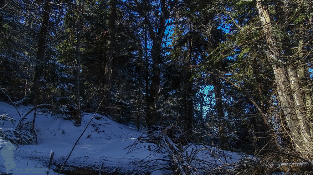 Not a photo equipment color cast, I called this 'The Blue Room'. So pretty! Pipe organs on the Goodnow Mountain trail! 2/22/16: Goodnow Mt Winter Fire Tower Challenge Hike with VIDEO!