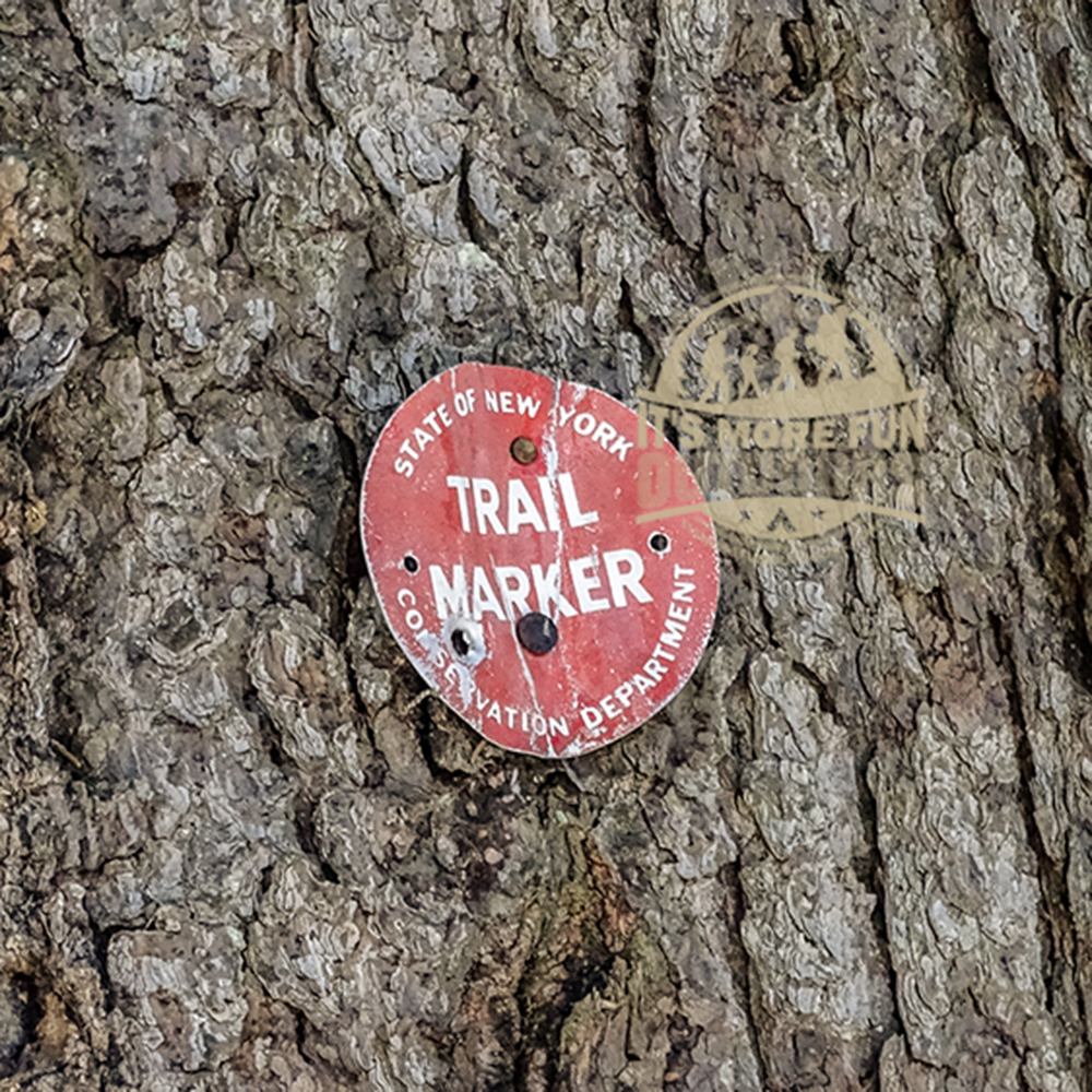 Red trail markers on the Bald Mountain Fire Tower trail. 3/5/2017: Bald (Rondaxe) Mountain Winter Fire Tower Challenge Hike!