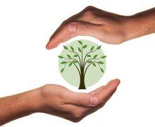 Facturación electrónica reduce gastos empresariales y minimiza impacto ambiental