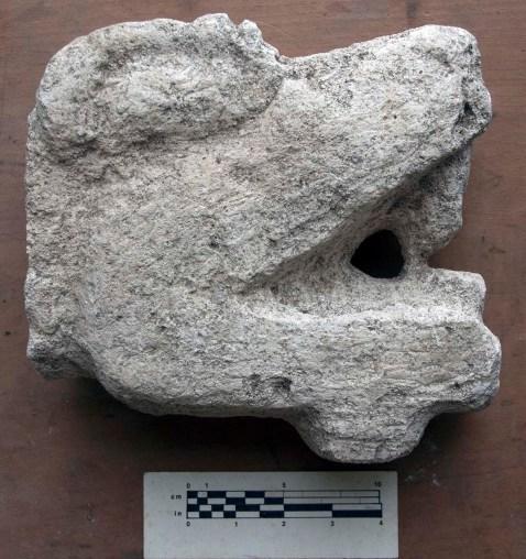 Tenoned Reptile Head, Str. QQ 1/1-1, Nixtun-Ch'ich'